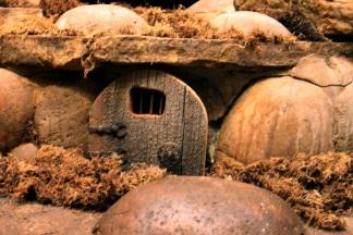 Hobbit Door in Wine Cooling Room